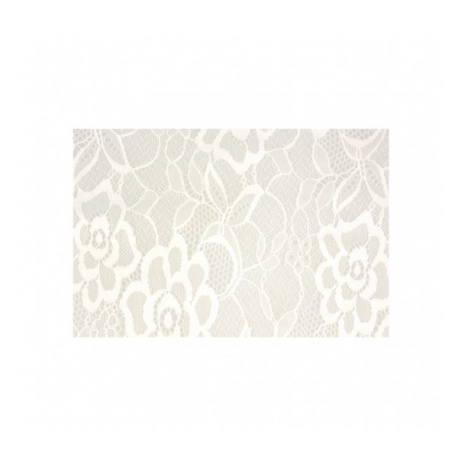 Tissu Dentelle Petite Laize Blanc
