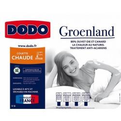 Couette Dodo Groenland Anti-Acariens