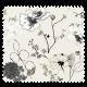 Tissu Nastasia Noir