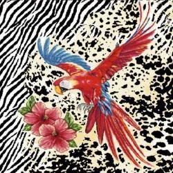 Coupon Arco Oiseau 45x45 cm