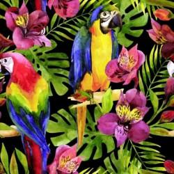 Tissu Popeline Parrots Imprimé Perroquets Multico