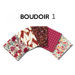 Un Lot de 5 Coupon Boudoir Multico 45x55 cm