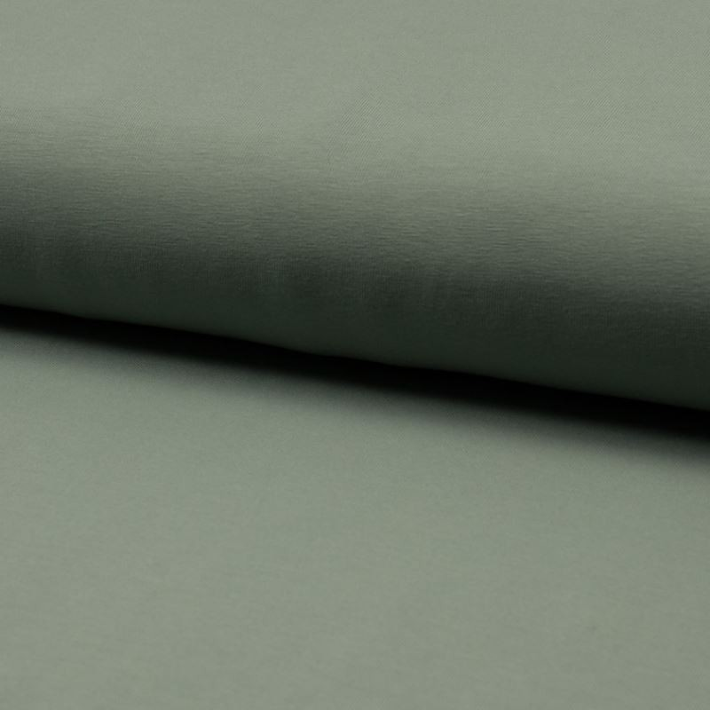Tissu Jersey Coton Bio Uni Menthe