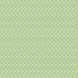 Tissu Fujian Imprimé Vert