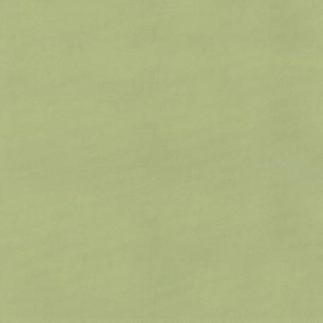 Tissu Chintz Uni Vert Anis Teflon