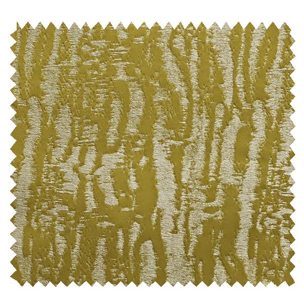 Dune Cactus